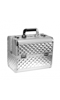 Кейс для косметики серебряный 3D