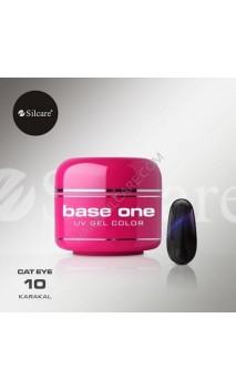 Цветной гель Silcare кошачий глаз 5 г 10